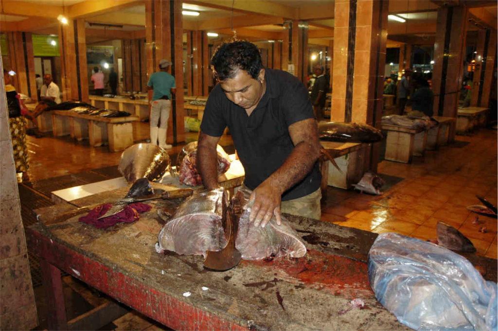 świt na targu rybnym w Negombo