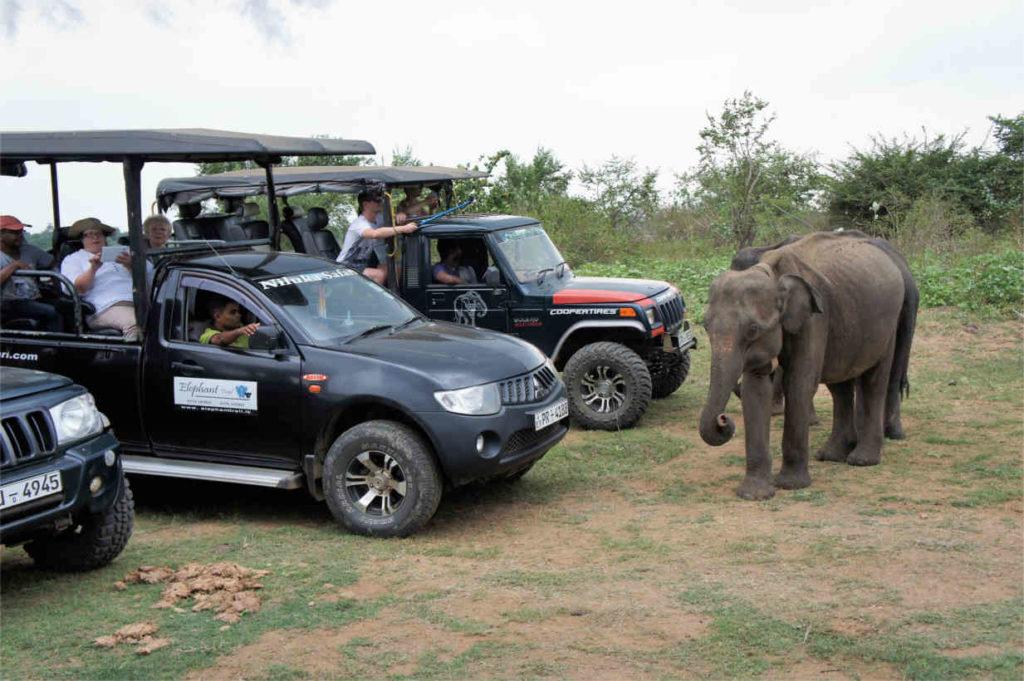 Park Narodowy Udawalewe
