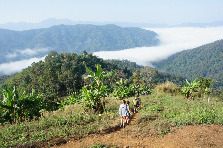 Trekking Tajlandia - zamglona dolina