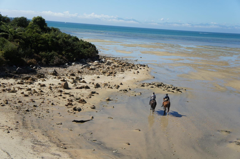 Nowa Zelandia - Abel Tasman National Park