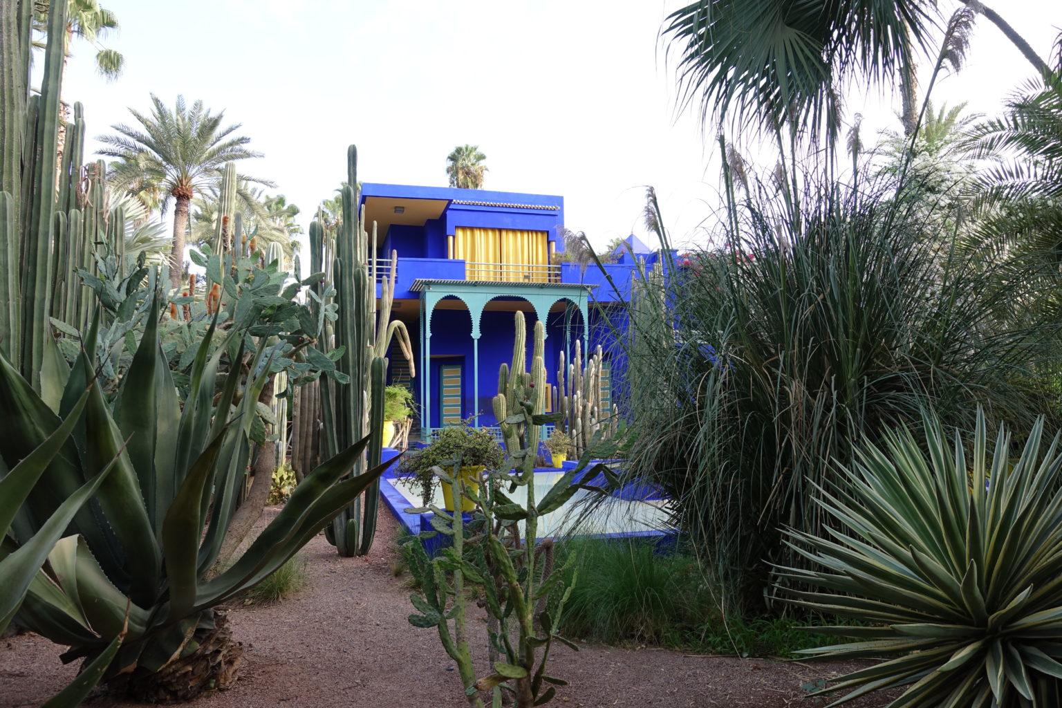 Ogród Jardin Majorelle