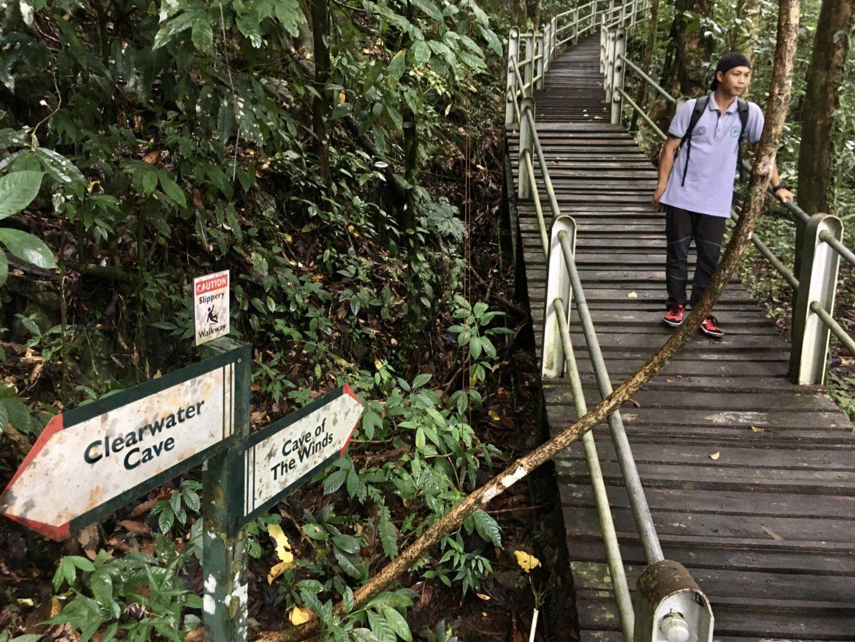 Niektóre szlaki w parku Mulu poprowadzone są po pomostach, oznakowanie jest czytelne