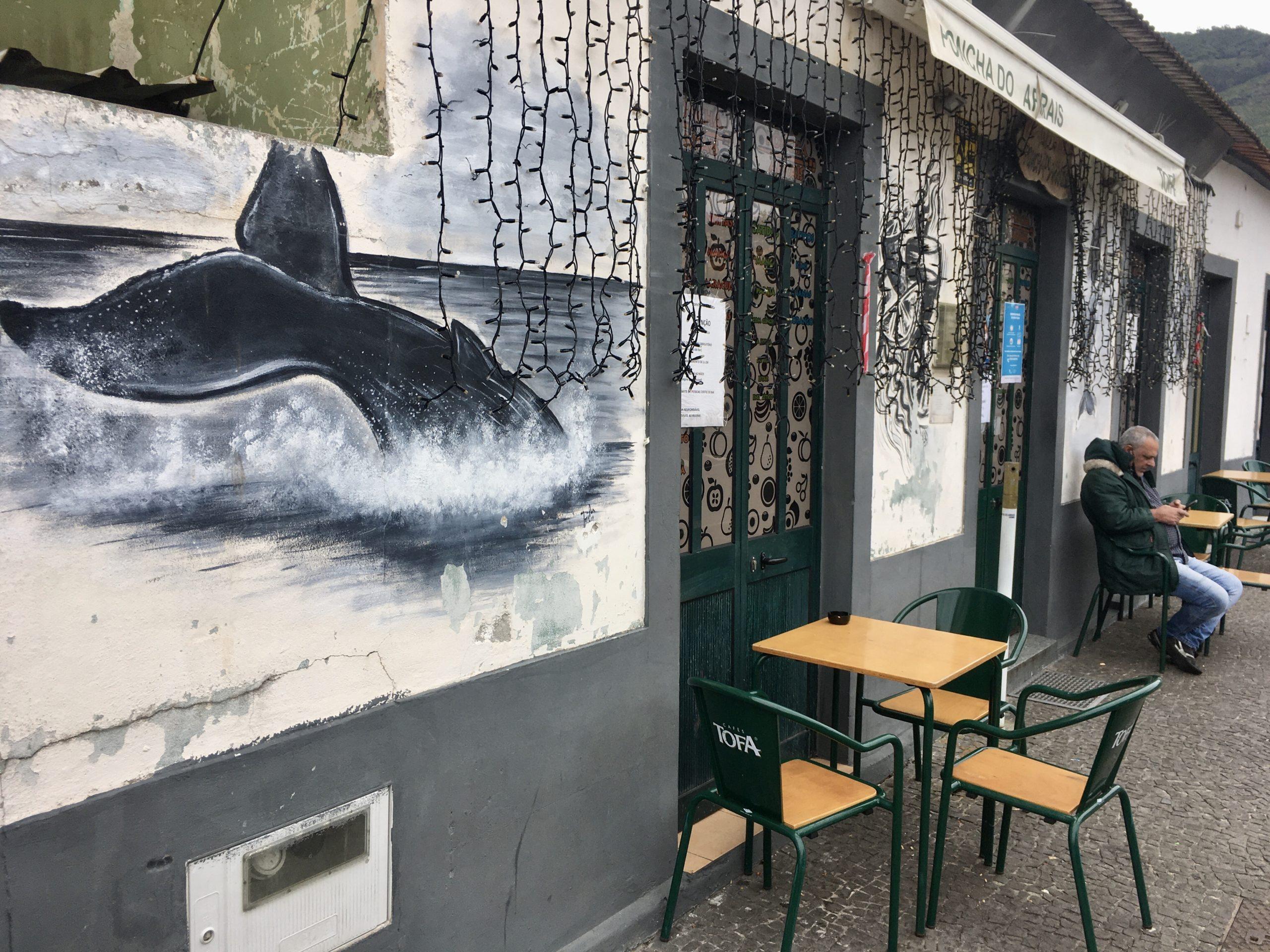 Canical kiedyś było centrum połowu wielorybów